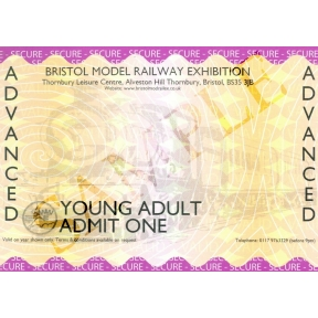 Bristol Model Railway Exhibition 2018 Young Adult Advanced Ticket (12 to 16)