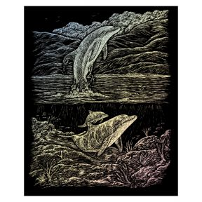 Dolphin Cove Engraving Art